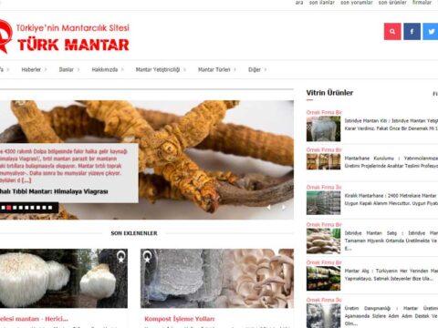 Türk Mantar